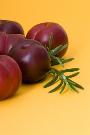 plums and rosemary on orange background Stock Photo - 13584224