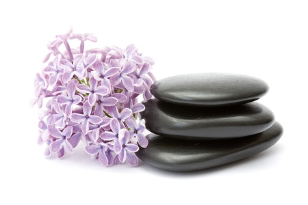 massage stones and lilac flowers photo
