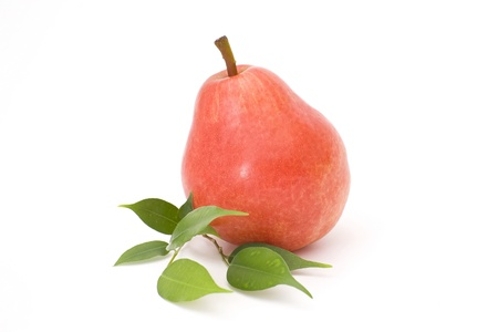 red pear Stock Photo - 13662315