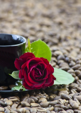 cup of coffee and red rose photo