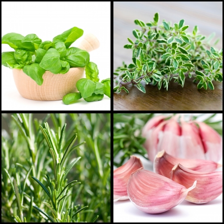 a collage of four pictures of herbs and garlic photo