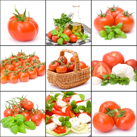 a collage of nine pictures of tomatoes photo