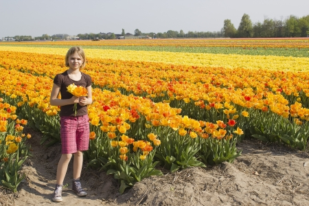 little girl in tulips field photo
