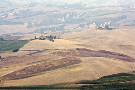 typical tuscan landscape   photo