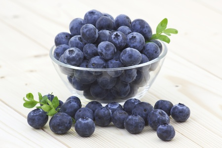the blueberry: fresh blueberries in a bowl
