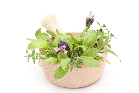 Mortar with herbs isolated on white background Stock Photo - 14750004