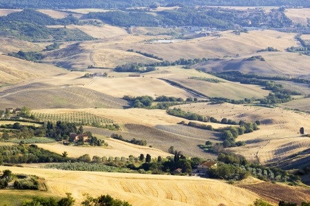 view of typical Tuscany landscape in summer, Italy  photo