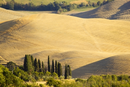Tuscany hills in summer, Italy photo
