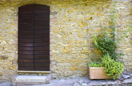 old tuscan wall with doors and flowers photo