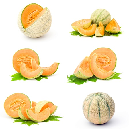 melons: collection of fresh melon fruits