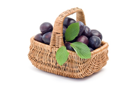 basket full of fresh plums photo