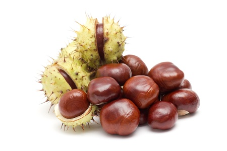 prick: chestnuts