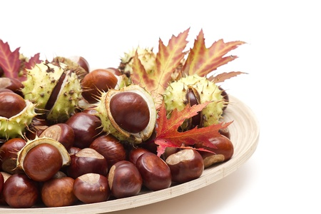 chestnuts and autumn leaves on a plate photo