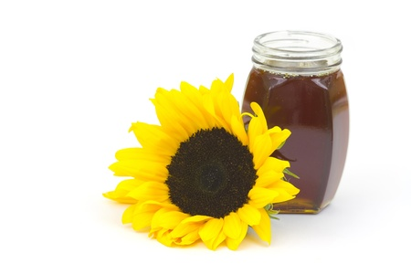 honey and sunflower on white photo