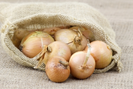 unwashed: Fresh onions in package Stock Photo
