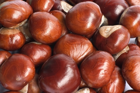 group of chestnuts - background photo