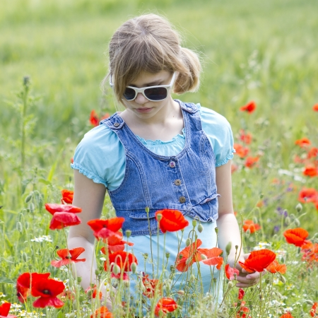 Cute young girl in poppy field photo