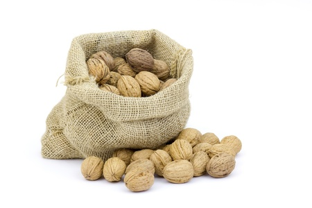 Burlap sack full of whole walnuts isolated on white background Stock Photo - 17048661