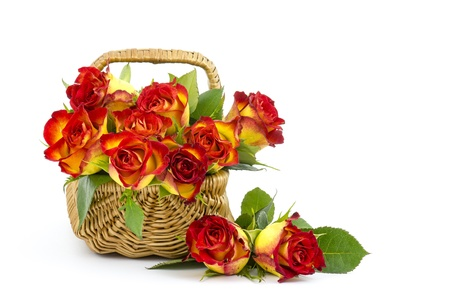 red and yellow roses in a basket Stock Photo - 17333502