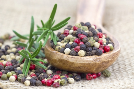 Colored peppers mix in wooden spoon and rosemary photo
