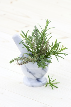 fresh herbs - thyme and rosemary photo