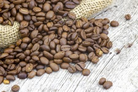 coffee beans photo