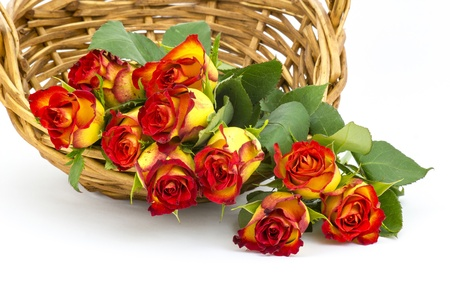 red and yellow roses in a basket Stock Photo - 18992386
