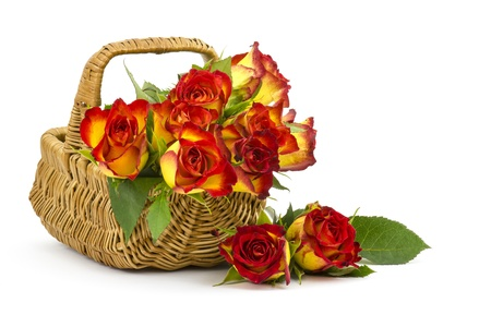 red and yellow roses in a basket Stock Photo - 18992377