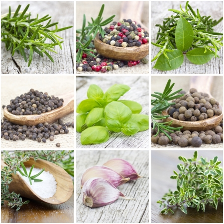 herbs and spices - collage Stock Photo