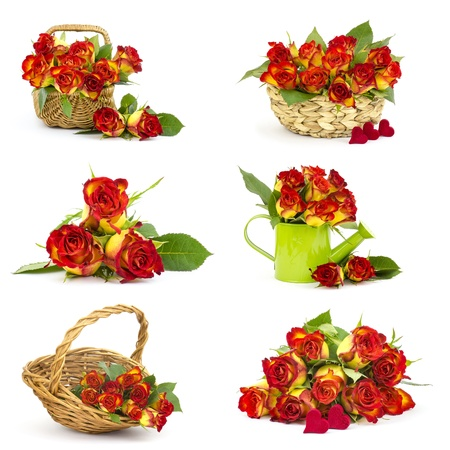 red and yellow roses - collage photo