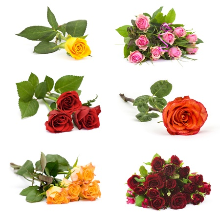colourful roses - collage Stock Photo - 19128952