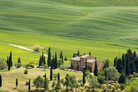 Toscane - paysage verdoyant typique au printemps Banque d'images - 20681230