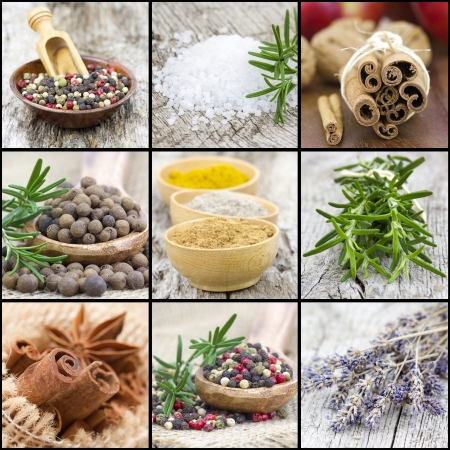 collage with spices photo