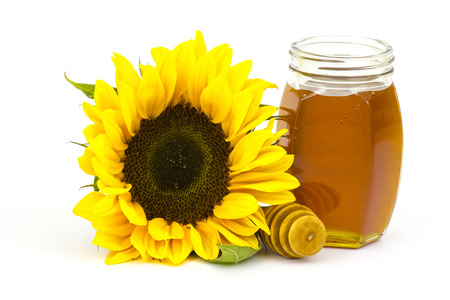 honey and sunflowers on white background photo