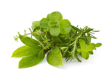 Freshly harvested herbs on white background