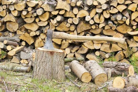 firewood in the garden photo