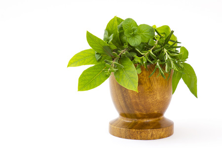 Mortar with fresh herbs on white background photo