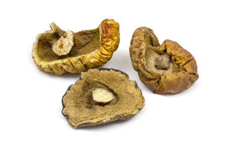 fungous: dried mushrooms on white background