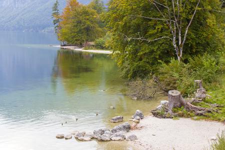 bohinj: Bohinj lake in Slovenia