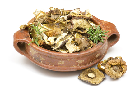 fungous: dried mushrooms in a pot on white background