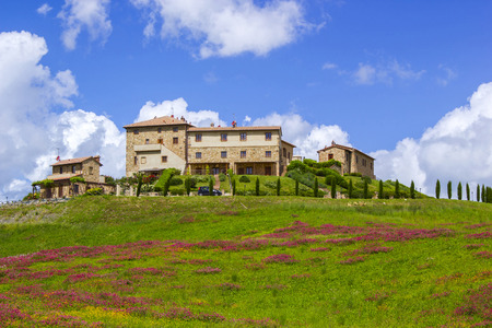 Tuscany - landscape with spring flowers Editorial