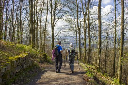 Spring Forest Hiking trail Rheinsteig in Siebengebirge Germany Stock Photo