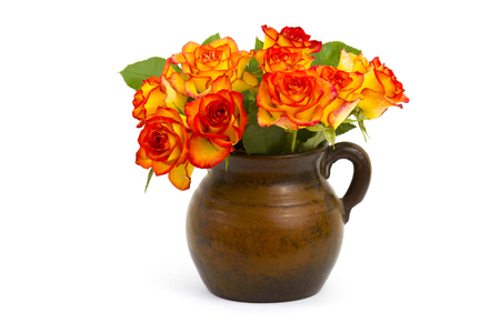 roses in a vase on white background