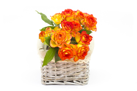 roses in a basket on white background