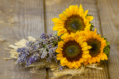 sunflowers and lavender Stock Photo