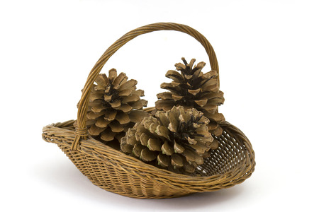 basket with cones on a white background
