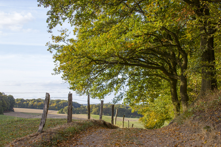 Autumn in the Lower Rhine Region, Germany Stock Photo