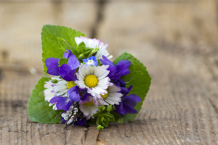 Viola odorata and daisies -  spring flowers bouquet