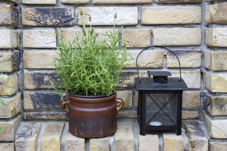 beautiful place in the garden in the mediterranean style, lavender and lamp