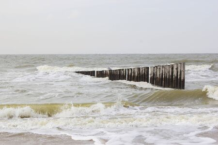 Wave breaker made of wooden stakes on the beach, Renesse, Netherlands Stock Photo